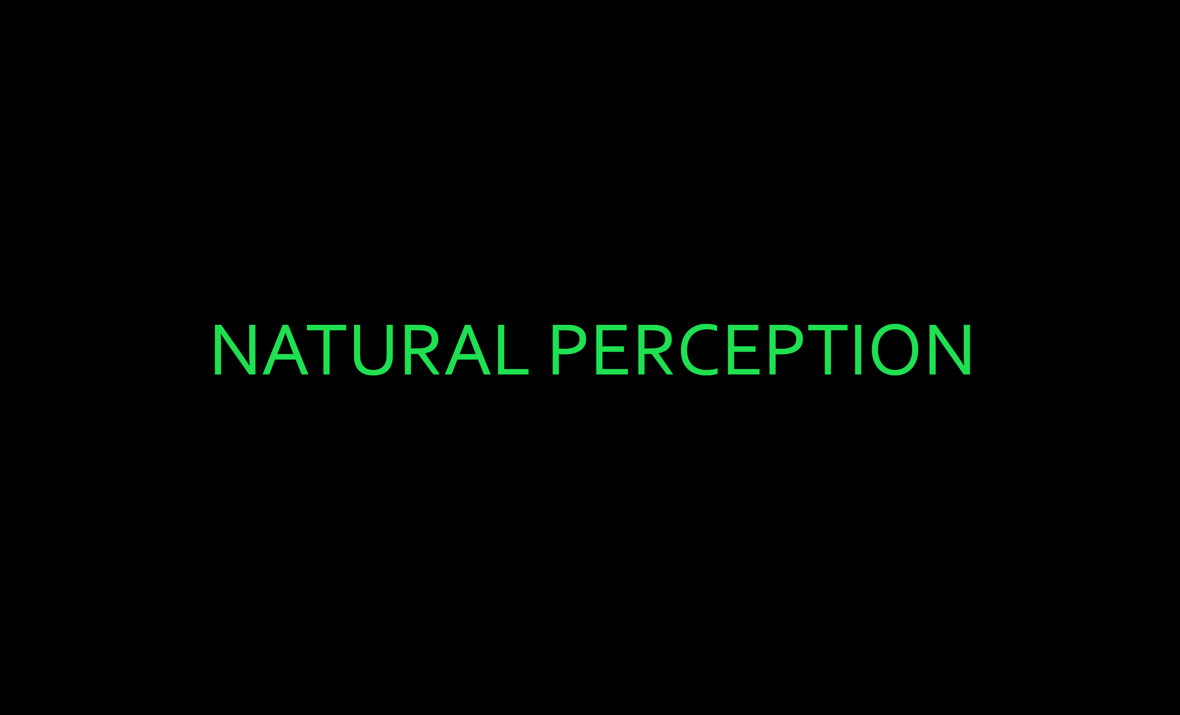 NATURAL PERCEPTION
