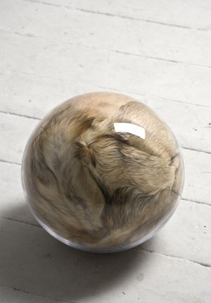 Hairy Eye Ball I, 2011, 30cm diameter, recycled fur, pillow filler inside handblown glass