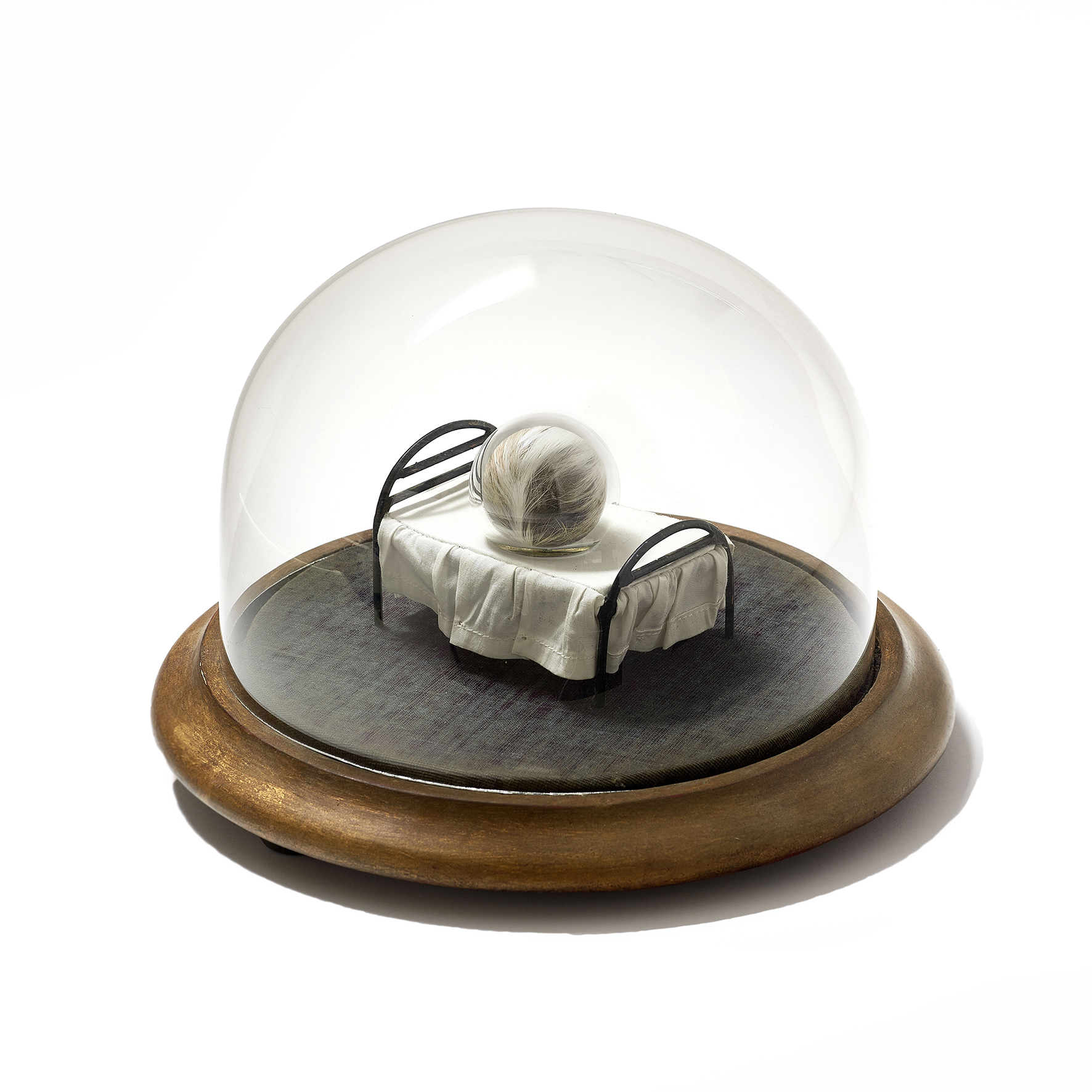 Seed on Bed, 2017, vintage fur, handblown glass, cotton, steel inside antique glass dome, 8x6x5.5cm (without dome), 11.5x17.17cm (with dome) rel=